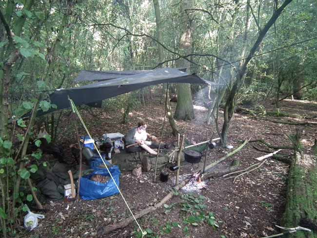 Woodland Camping September 2011