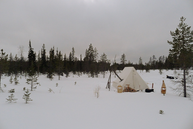 Snowtrekker heated tent and stove in the boreal forest in winter.