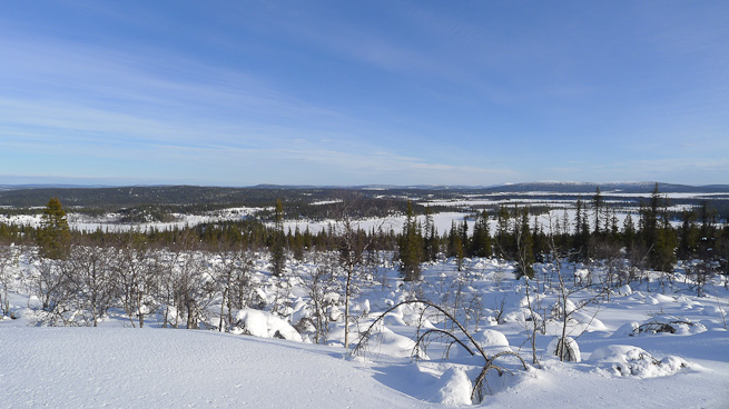 Winter landscape in northern Sweden from above the tree line