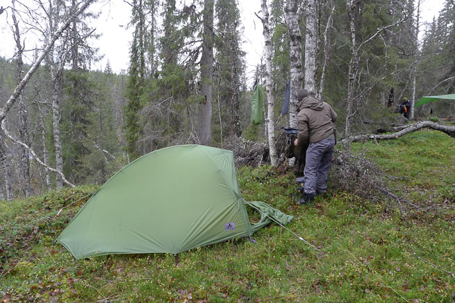 Tent in the northern forest