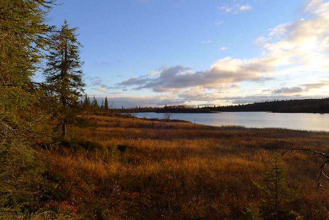 Small boreal lake