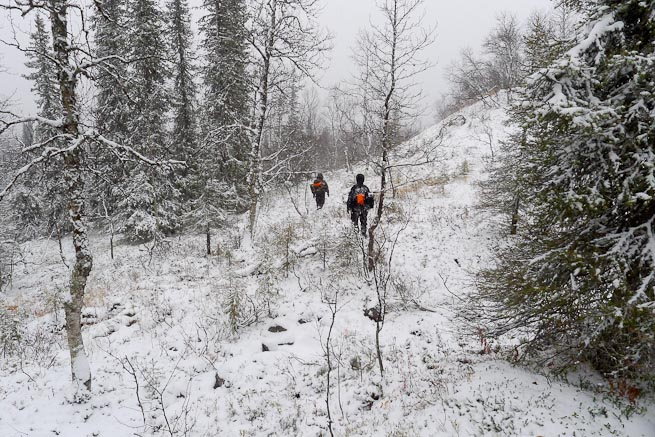 Men walking into the trees in snowy conditions in Sweden