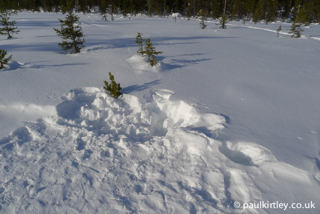 Area of snow for collecting for water