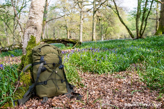 Berghaus Munro daypack leaning against a birch tree with a backdrop of bluebells and woodland