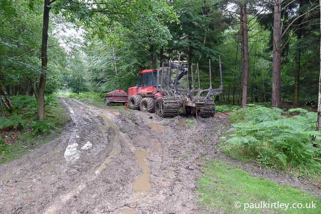 Forestry operations are part of a landowner's income in many instances