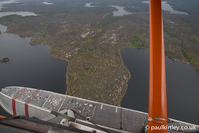 Burned out boreal forest from above
