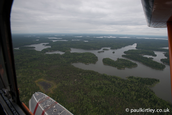 View of northern coniferoous forest from a float plane in flight