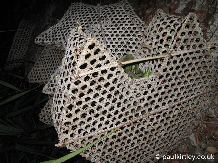 Hexagonal woven fish trap