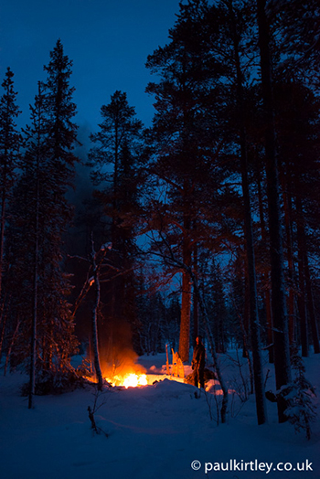 glowing fire in dark forest