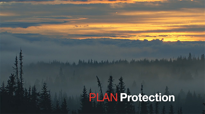 PLAN - Protection
