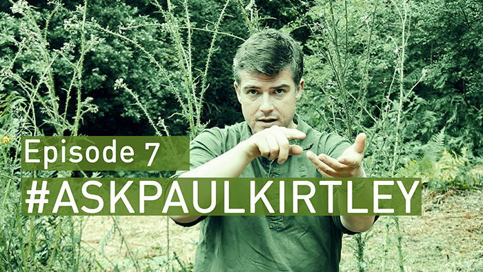 askpaulkirtley episode 7