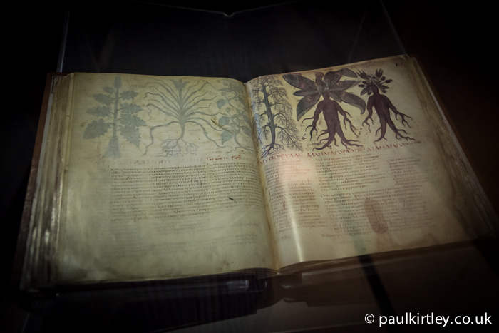Dioscorides' Herbarium De Materia Medica, 7th Century AD, Facsimile. On display at the Colloseum, Rome, Italy. Photo: Paul Kirtley.