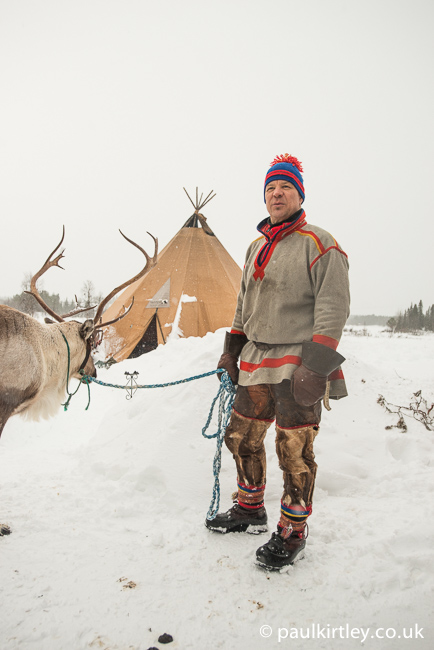 Sami man with domesticated reindeer on a lead
