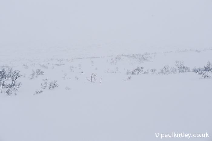 near whiteout in lower fells in Norway