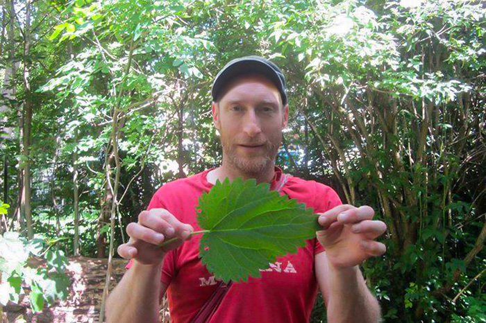 John Rensten with a large stinging nettle leaf