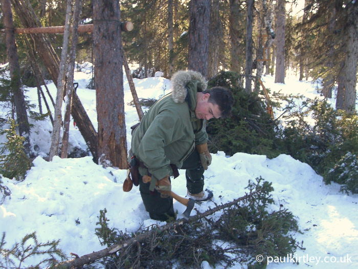 Paul Kirtley using axe in boreal forest in northern Sweden.
