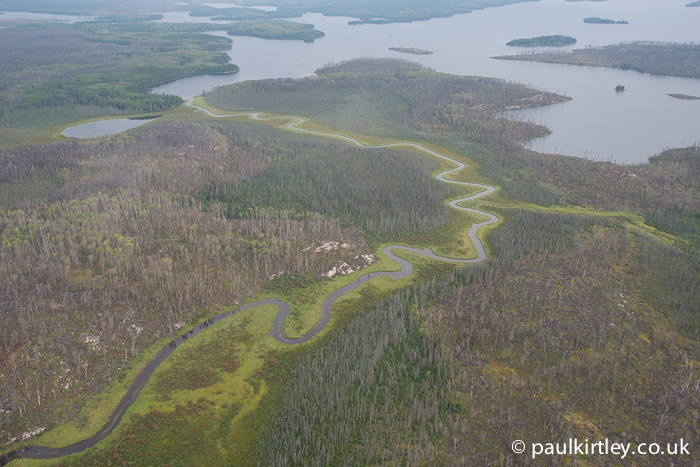 Aerial view of boreal landscape in Canada