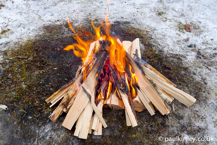 Split wood fire in the boreal forest in winter.