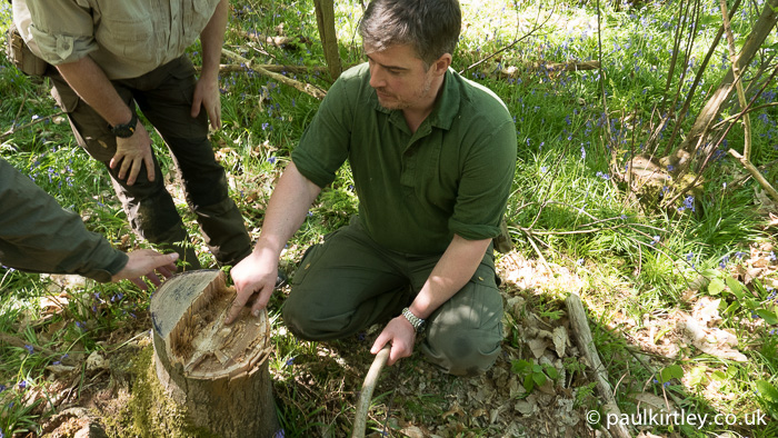Paul Kirtley pointing out hinge after tree felling with axe and saw