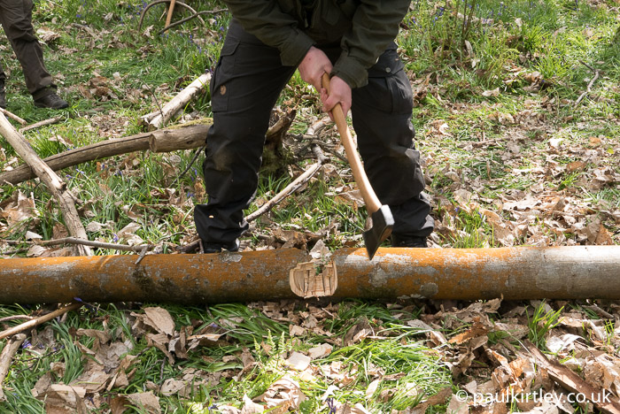 how to cut a tree with an axe