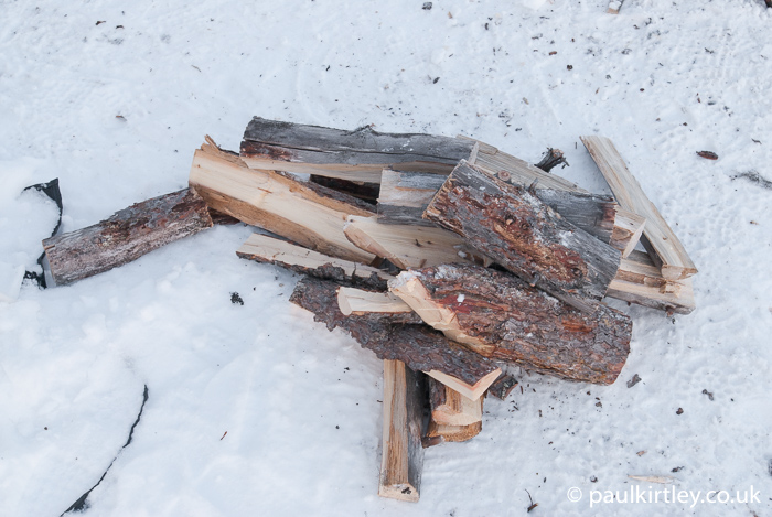 Northern forest firewood