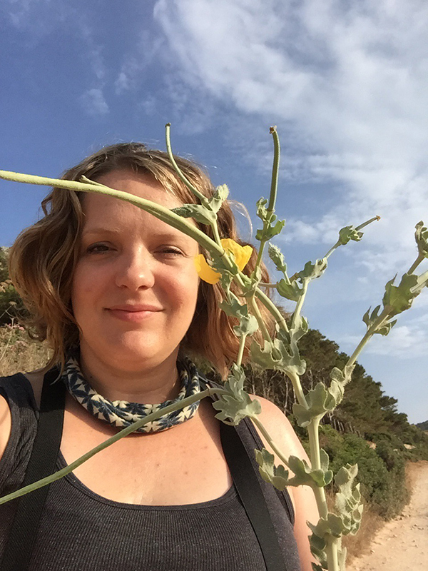 holding Glaucium flavum (Papaveraceae) - used for contusions in the Aegadian islands